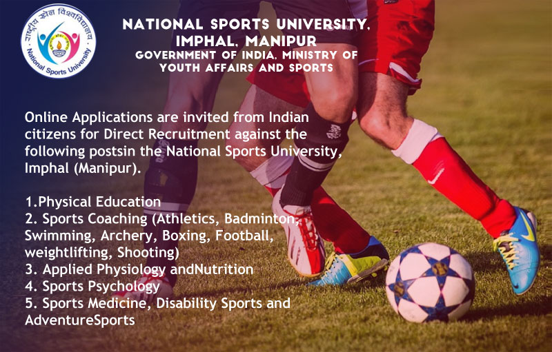 Job Sports Professors Coaches in the National Sports University